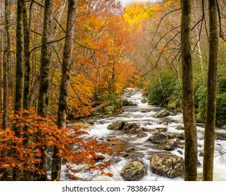 Autumn Splendor in Great Smoky Mountains National Park
