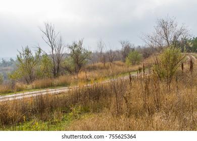 Autumn steppe in the Zaporozhye region. Ukraine. November 2017