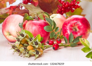 Autumn still life with apples, rosehip and guelder rose