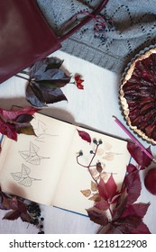 Autumn still life in burgundy colors. Autumn or winter concept, lifestyle blogers. Flat lay, top view.