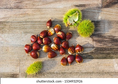 autumn still life with chestnuts and husks shot from above; flat lay with natural ingredients