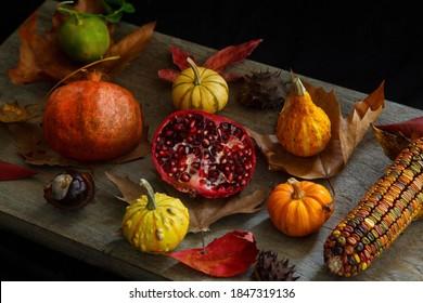 Autumn still life decoration isolated on wood background