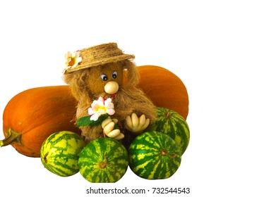 Autumn still life. The harvest is harvested and under reliable protection. White background