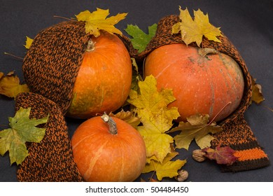 Autumn still life. Autumn leaves, warm scarf and pumpkin. Top view