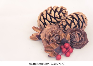 Autumn still life pinecone and winter berries image on a white background.