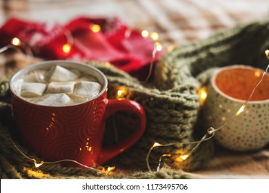 Autumn still life from pumpkin, leaves, pine cones, candles, scarf, red mug of cocoa, coffee or hot chocolate with marshmallow on warm plaid with garland. Concept of cozy winter home environment