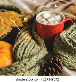 Autumn still life from pumpkin, leaves, pine cone, scarf, red mug of cocoa, coffee or hot chocolate with marshmallow on warm plaid with garland. Concept of cozy winter home environment