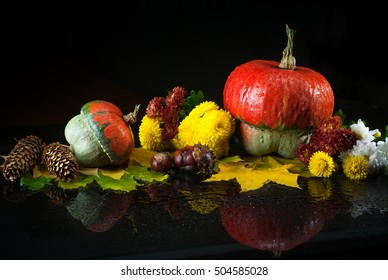 Autumn still life with pumpkins, chrysanthemums, and yellow maple leaves on a dark background with mirror reflection and water drops. Images for backgrounds and printed materials.