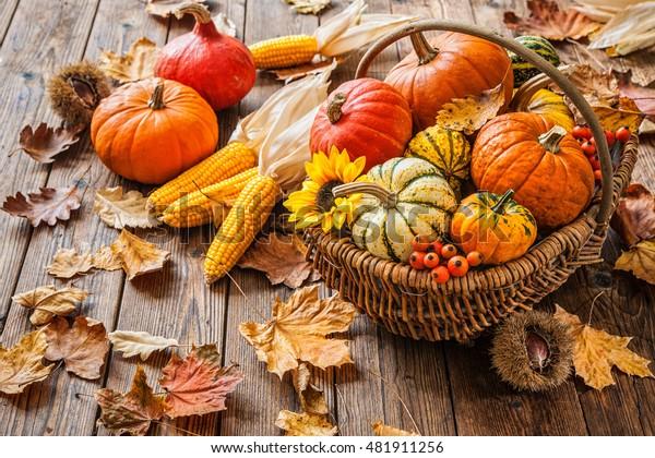 木の背景にカボチャ、トウモロコシ、葉を使った秋の静物