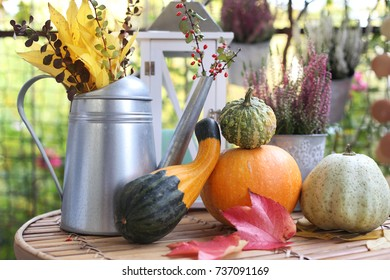 Autumn still life with pumpkins, leafs and lantern