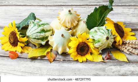 Autumn still life with squash,sunflowers and fallen autumn leaves
