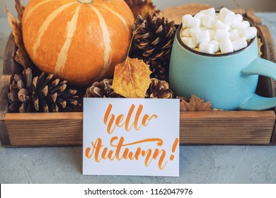 Autumn still life from tray full of pumpkin, leaves, cones, mug of cocoa, coffee or hot chocolate with marshmallow and sign Happy Autumn on concrete background. Concept warm home comfort.