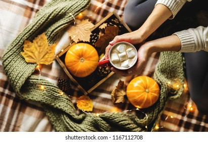 Autumn still life from tray full of pumpkin, leaves, cones, scarf, mug of cocoa, coffee or hot chocolate with marshmallow on plaid with garland. Woman's hand holding cup. Concept warm home comfort