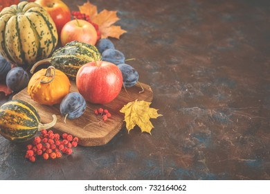 Autumn still life with vegetables and fruits - pumpkins, apples, plums nd yellow leaves. Free space for text.