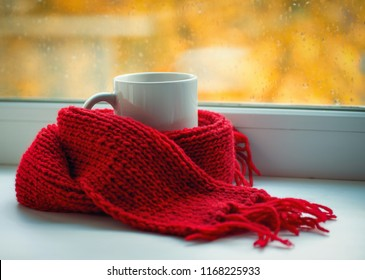 Autumn still life - Warm knitted scarf and cup of tea near a window.