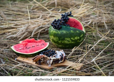 Autumn Still life with watermelon and grapes in the nature