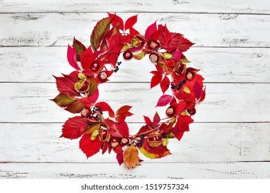Autumn still life with wild grape wreath