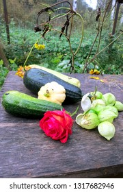 Autumn still life. Zucchini, patissons and roses, on a wet wooden table, in the rain.