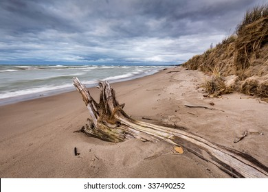 Autumn storm clouds form over driftwood on a Lake Huron beach - Pinery Provincial Park, Ontario, Canada