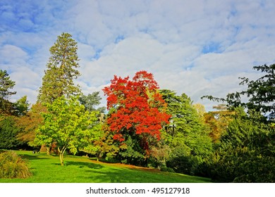 Autumn in Stratford Park, Stroud, The Cotswolds, Gloucestershire, United Kingdom