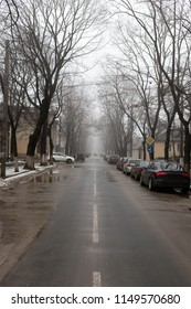 Autumn street in the city. Sciusev street in the Chisinau.
