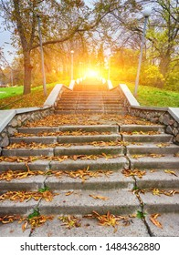 Autumn sunny day, steps of stairs in the old park, many fallen foliage. Seasons. Natural background in golden color