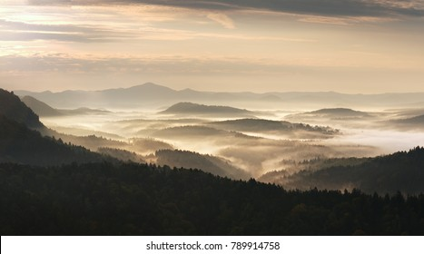 Autumn sunrise. Deep forest in a beautiful hilly landscape within inversion weather. Treetops  increased from foggy background. Vivid effect.