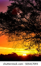 Autumn Sunrise in the United Kingdom