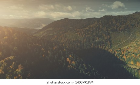 Autumn Sunset Forest Mountain Scenery Aerial View. Bright Wildlife Nature Multicolored Hill Tree Slope Overview. Epic Highland Rocky Landscape Twisted Rural Road Timelapse Drone Fligh