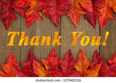 Autumn Thank You message with fall leaves on weathered wood