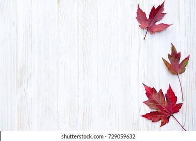Autumn Thanksgiving Background