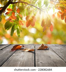 Autumn theme and wooden deck table