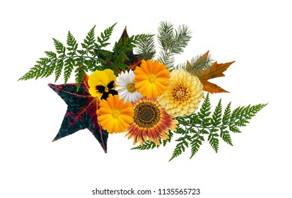 Autumn themed floral element, isolated on white background. Seas