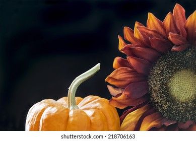 Autumn themed still life with a black background and room for copy space