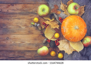 autumn time background, pumpkins, apples, dry leaves, rowan berries on an old wooden table, top view