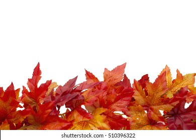 Autumn Time Background, Some fall leaves isolated on white with copy space for your message
