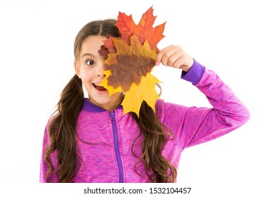Autumn time. Little girl welcome autumn season. Kid girl cute face hold leaves. Child with autumn yellow leaves. DIY with dried leaf. Natural materials for crafts. Small girl celebrating fall.