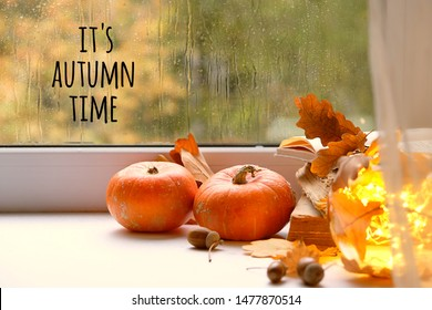 It's autumn time. orange pumpkins on window sill. beautiful autumn seasonal composition. fall time, thanksgiving and halloween concept. home comfort