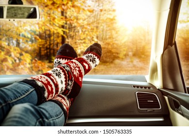 Autumn time and woman legs with socks in car interior. Free space for your decoration and golden color of autumn leaves .