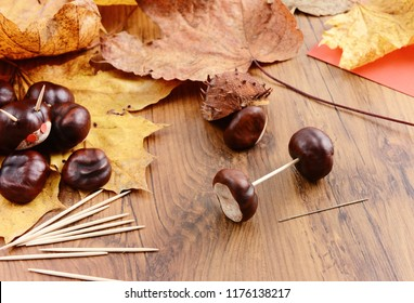 autumn tinker creative figures of Chestnuts like Caterpillar and turtle.