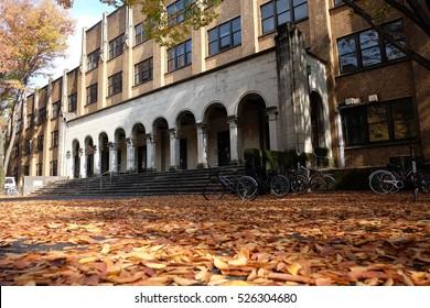 Autumn in Tokyo. (The university of Tokyo, Japan.)