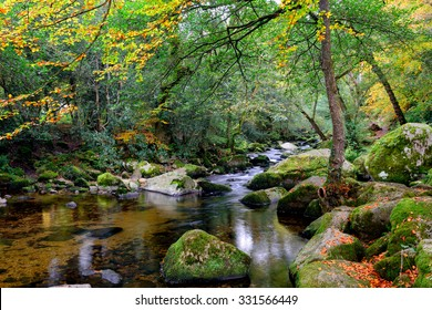 Autumn tranquillity on the river Plym as it flows through beautiful forest at Dewerstone on Dartmoor National Park in Devon