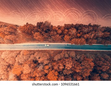 Autumn transportation background. Car moving in autumn forest from above. Aerial autumn backdrop.