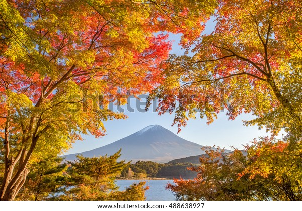Autumn tree and Mountain Fuji at lake kawaguchiko in autumn season