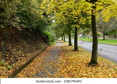 Autumn trees and fallen leaves in Menlove Avenue, Liverpool England