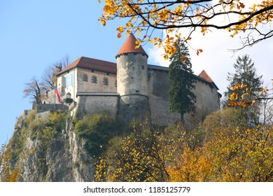 Autumn trees at Lake Bled, Slovenia. Bled Castle in the background. Lake Bled is popular travel destination in Slovenia.
