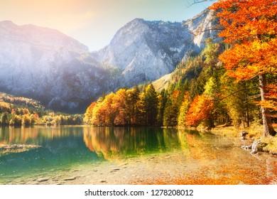Árboles de otoño a orillas del lago Hinterer Langbasee en las montañas de los Alpes, Austria.