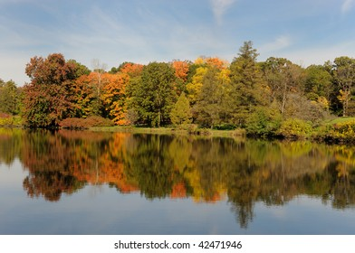 Autumn trees reflected on pond