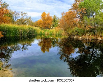 Autumn trees reflected in pond
