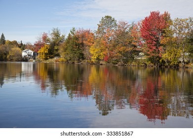 Autumn trees reflection in the lake